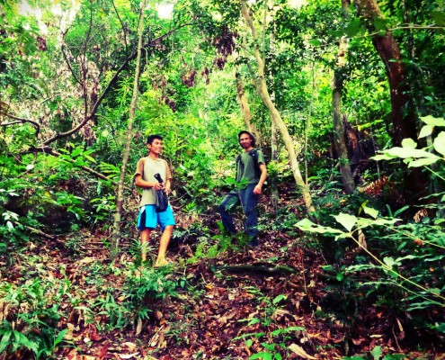 Trek in forest Archives - Rimba